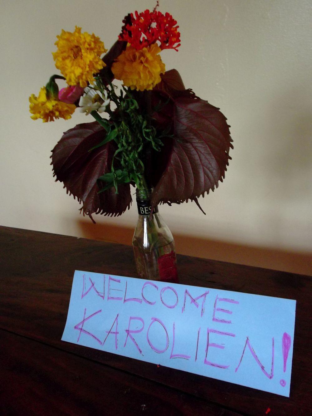 Blog Karolien 2