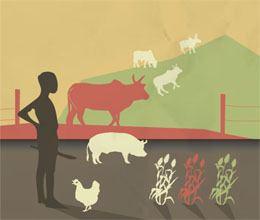 agro pastoralism